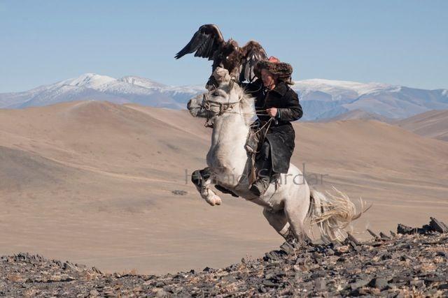 14-mongolian-reindeer.jpg