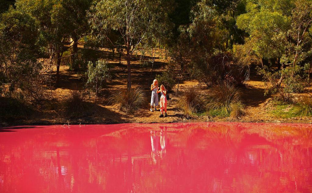 Pink Lake, lake, Australia, Melbourne, youtube, video, industrial park, park, phenomena, natural, nature, landscape, water, Westgate Park, Parks Victoria, top destination, vacation,